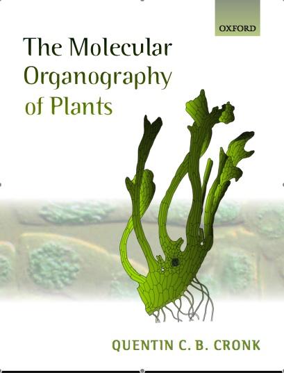 evolutionary developmental biology